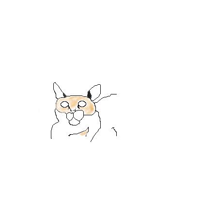 Мой, братик, кот, по, имени, Пусик, |, Dragonmaster, Эскиз, рисунка, Я, с, ним, хорошо, живу, животные, всёже, видят, всё, даже, полтаргейста, рисунок, картинка, picture