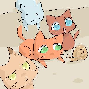 Kitty, |, Racoon-kun, Эскиз, рисунка, XD, рисунок, картинка, picture